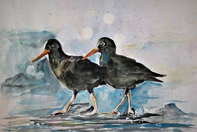 Painting - Black Oystercatcher by Khalid Saeed