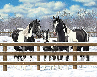 Pinto Painting - Black Paint Horses In Snow by Crista Forest