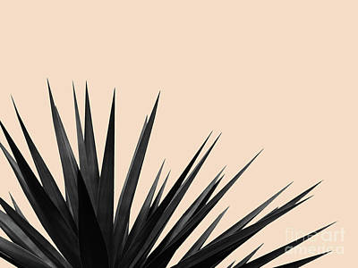 Mixed Media - Black Palms On Pale Pink by Emanuela Carratoni
