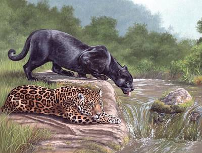 Jaguar Art Painting - Black Panther And Jaguar by Rachel Stribbling