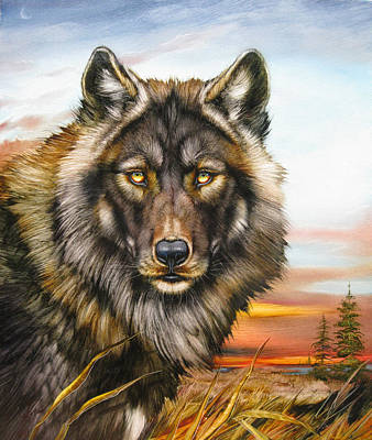 Black Phase Wolf Art Print