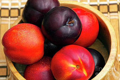 Photograph - Black Plums And Nectarines In A Wooden Bowl by Sharon Talson