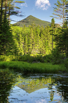 Photograph - Black Pond - Owl's Head, New Hampshire by Erin Paul Donovan
