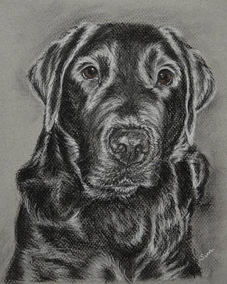 Black Retriever Art Print by Sun Sohovich