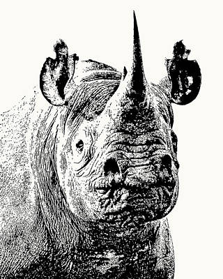 Photograph - Black Rhino Portrait by Scotch Macaskill