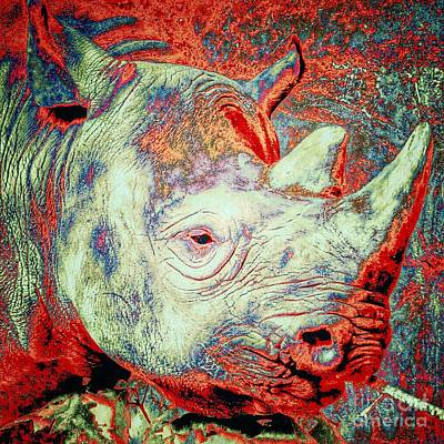 Photograph - Black Rhino  by Susan Garren