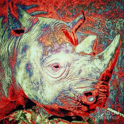 Photograph - Black Rhino  by Susan Garren