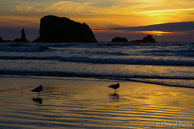Photograph - Black Rock Sunset by Cheryl Perin