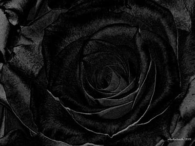 Photograph - Black Rose  by Michelle  BarlondSmith
