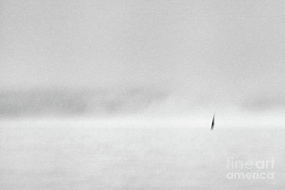 Photograph - Black Sail #1524 by Andrey Godyaykin