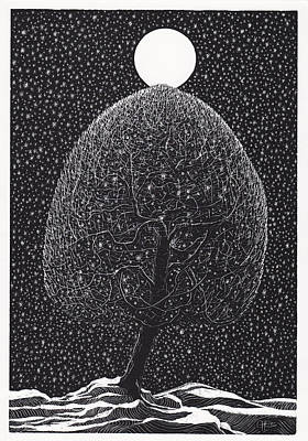 Drawing - Black Shadow Tree by Charles Cater