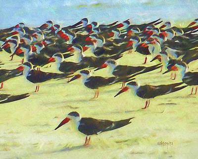 Digital Art - Black Skimmers Coastal Sea Birds  by Rebecca Korpita