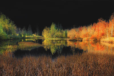 Photograph - Black Sky by Philippe Sainte-Laudy