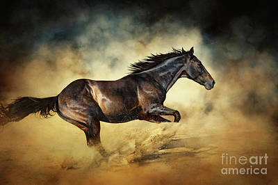 Black Stallion Horse Galloping Like A Devil Art Print
