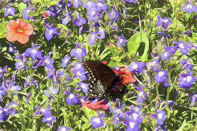 Photograph - Black Swallowtail Butterfly On Purple Flowers. by Rusty R Smith