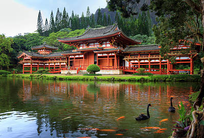 Photograph - Black Swans At Byodo-in by Geoffrey C Lewis