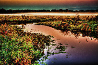 Photograph - Black Tern Marsh October Sunrise by Roger Passman