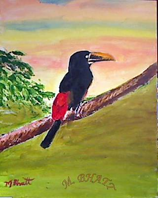 Painting - Black Toucan by M bhatt