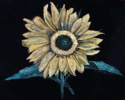 Painting - Black Velvet Sunflower by Chrissey Dittus