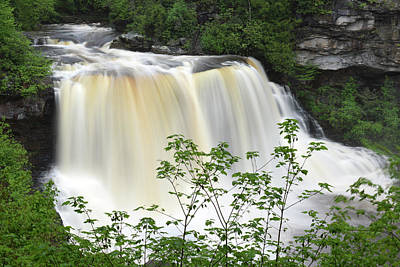 Photograph - Black Water Falls Wv by Dung Ma