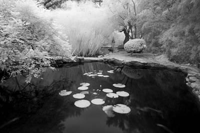 Black Water Pond Art Print by John Gusky