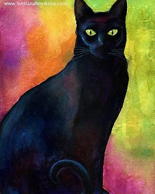Pets Photograph - Black Watercolor Cat Painting By by Svetlana Novikova