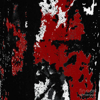 Photograph - Black White Red Allover  Iv by Lee Craig