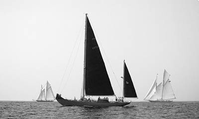 Photograph - Black Wings In Classic Sea Race by Pedro Cardona Llambias