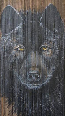 Painting - Black Wolf by Barbara Prestridge