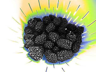 Photograph - Blackberries by David Pantuso