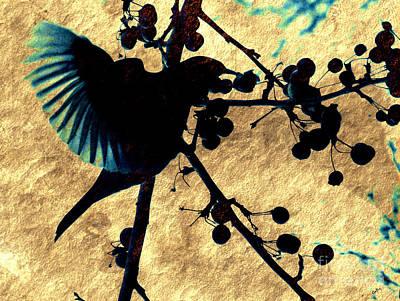 Blackbird Mixed Media - Blackbird Fan by Callan Percy