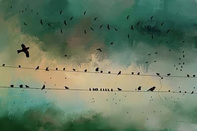 Photograph - Blackbird Gathering by Ericamaxine Price