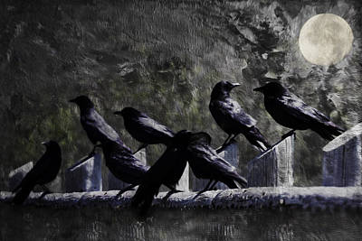 Photograph - Blackbird Shadows And Moonlight Conversations by Diane Schuster
