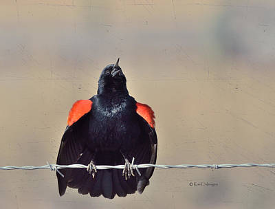Art Print featuring the photograph Blackbird Singing by Kae Cheatham