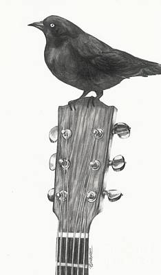 Drawing - Blackbird Solo  by Meagan  Visser