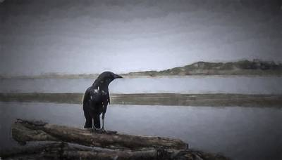 Photograph - Blackbird Surveys The Bay by HW Kateley