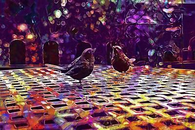 Blackbirds Garden Birds  Art Print