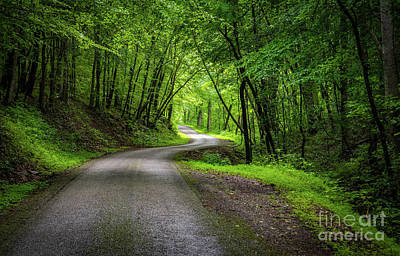 Photograph - Blackburn Fork Road by Christopher L Nelson