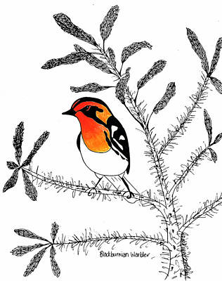 Warbler Mixed Media - Blackburnian Warbler by Sarah Rupert