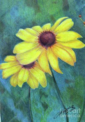 Fuqua - Artwork Drawing - Blackeyed Susan by Beverly Fuqua