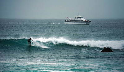 Photograph - Blackfin And Surfer by Joyce Dickens