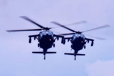 Photograph - Black Hawks On Patrol by Mountain Dreams