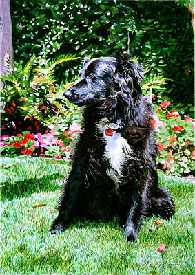Watercolor Pet Portraits Painting - Blackie by David Lloyd Glover