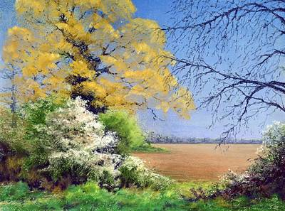 Oak Tree Painting - Blackthorn Winter by Anthony Rule