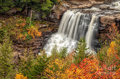 Photograph - Blackwater Falls In Autumn Wv by Kathleen K Parker