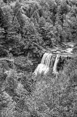 Blackwater Canyon Photograph - Blackwater Falls Wv - Monochrome by Steve Harrington