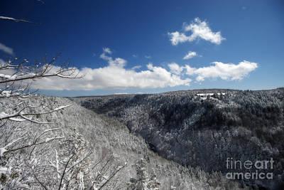 Photograph - Blackwater Lodge Winter by Dan Friend