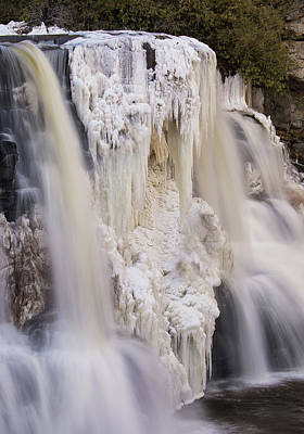Photograph - Blackwater Winter Portrait by Art Cole