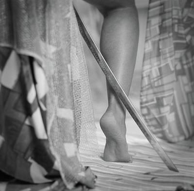 Photograph - Blade #1067 by Andrey Godyaykin