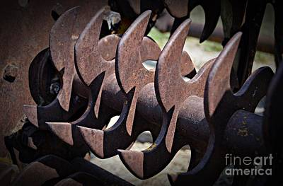 Photograph - Blades by Chalet Roome-Rigdon